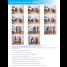 Bestcare Handi-Lift - Mini Stretcher - Usage